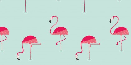 Flamingo patterns